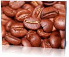 Холст этнические Кофе coffee-264289